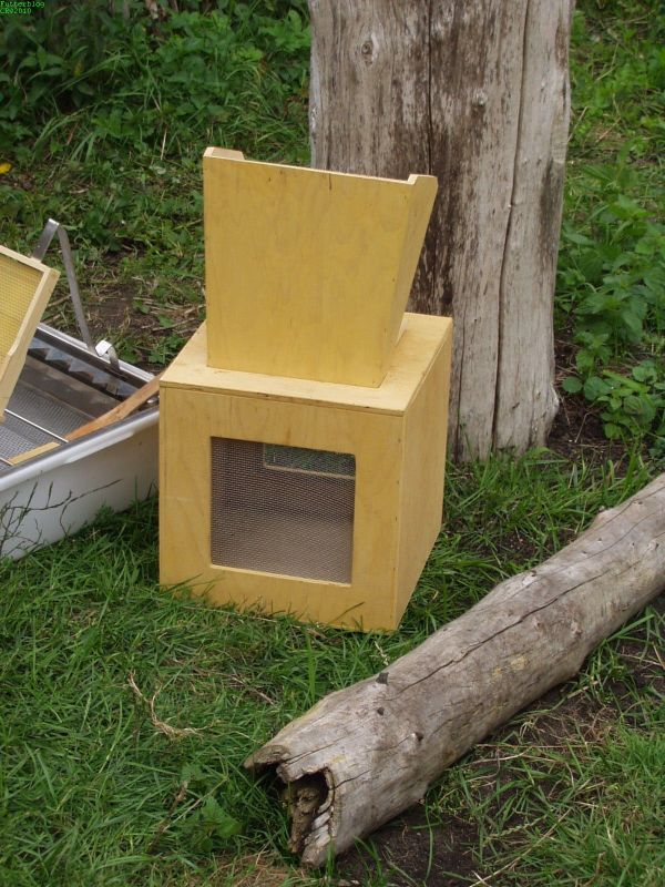 Kasten zum Bienen einfangen